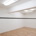 [YK2008-1-0] Hanging line